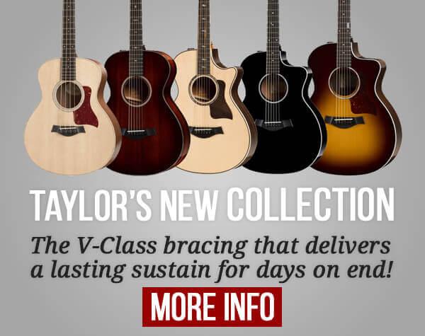 Taylor Acoustics 2019
